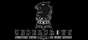 under logo